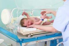 Nouveau-né dans l'incubateur Images stock
