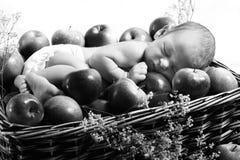 Nouveau-né dans le panier avec des pommes Photo stock