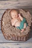 Nouveau-né dans un panier Images stock