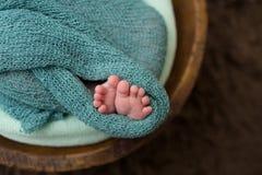 Nouveau-né dans une cuvette, macro des orteils, pieds Images stock