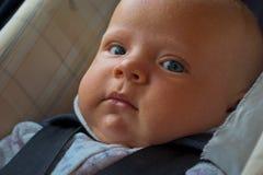 Nouveau-né heureux dans le siège de véhicule Image libre de droits