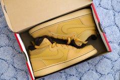 Nouveau Nike vont au devant de mi chaussures de sport d'hiver de ville dans la boîte Photo libre de droits