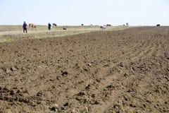 Nouveau sol arable Photo stock