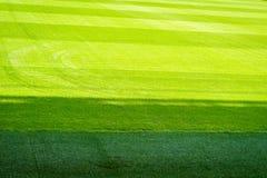 Nouveau terrain de jeu de nouvelle texture naturelle d'herbe verte Photos libres de droits