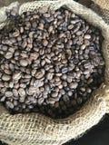 nouveaux grains de café rôtis Images stock