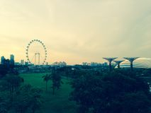 Nouveaux jardins botaniques de Singapour et roue de ferris Images libres de droits
