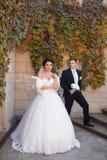 Nouveaux mariés élégants posant sur la séance photos photos stock