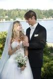 Nouveaux mariés Image libre de droits