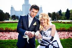 Nouveaux mariés avec des pigeons Images libres de droits