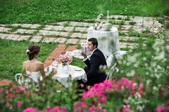 Nouveaux mariés ayant le thé dans un espace vert photos stock