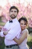 Nouveaux mariés dans le support d'amour sur la nature, dans la perspective des enjeux en bois, par temps ensoleillé Le marié élég photographie stock libre de droits