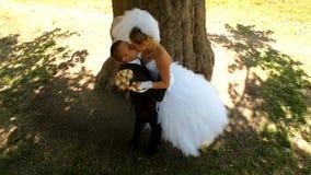 Nouveaux mariés embrassant sous un arbre banque de vidéos