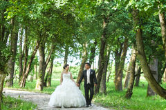 Nouveaux mariés marchant en nature Image libre de droits