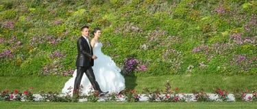 Nouveaux mariés marchant sur la voie Photographie stock libre de droits