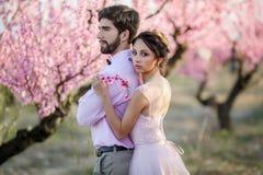 Nouveaux mari?s dans le support d'amour sur la nature, dans la perspective des enjeux en bois, par temps ensoleill? Le mari? ?l?g photos stock