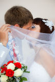 Nouveaux mariés Photographie stock