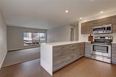 Nouvel appartement moderne avec la cuisine grise photos libres de droits