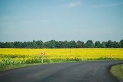 Nouvel itinéraire d'automobile Construction de routes Image libre de droits