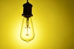 Nouvelle ampoule de lampe menée Photographie stock
