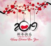 Nouvelle année chinoise heureuse 2019, année du porc an neuf lunaire Bonne année moyenne de caractères chinois illustration stock