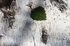 Nouvelle année de nombre découpée sur le bouleau Photographie stock