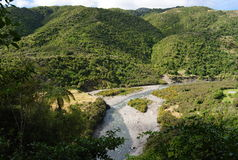 100% Nouvelle-Zélande pur Photos stock
