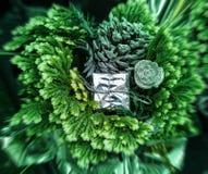 Nouvelles années de bouquet de vert avec une boîte brillante photos stock