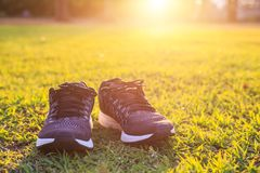 Nouvelles paires de chaussures de course noires/de chaussures d'espadrille sur l'herbe verte Photo stock