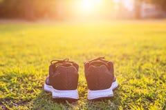Nouvelles paires de chaussures de course noires/de chaussures d'espadrille sur l'herbe verte Photos stock