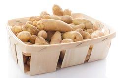 Nouvelles pommes de terre de rattes dans un panier Photo stock