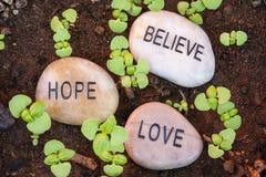 Nouvelles pousses d'usine apportant la croyance, l'espoir et l'amour Photos libres de droits
