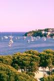 Nova de Palma Photos libres de droits