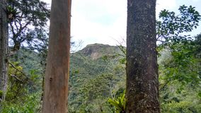 Nova Friburgo - Rio de Janeiro - Brazil Royalty Free Stock Images