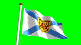 Nova Scotia flag stock video footage