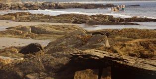 Nova Scotia havssida Arkivbild