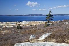 Nova Scotia Shoreline Stock Image