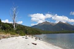 Nova Zelândia imagem de stock