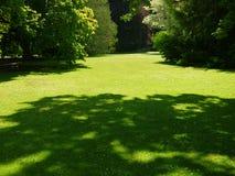 Nova Zelândia: Gramado dos jardins botânicos de Christchurch Foto de Stock