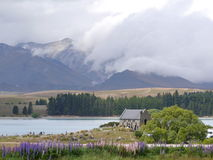 Nova Zelândia 8 - lago Fotografia de Stock