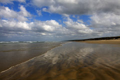 Nova Zelândia praia de 90 milhas Imagem de Stock
