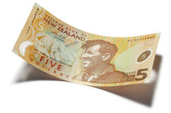Nova Zelândia dinheiro de cinco dólares Imagens de Stock