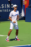 Novack Djokovic Stock Photo