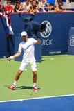Novack Djokovic Stock Photos