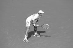 Novack Djokovic Stock Photography
