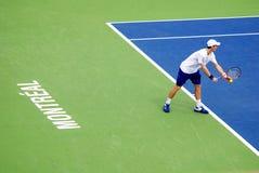 Novack Djokovic Royalty Free Stock Image