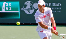 Novak Djokovic at the 2010 BNP Paribas Open Stock Photos