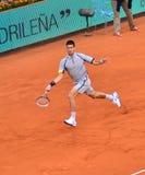 Novak Djokovic Obraz Stock