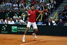 Novak Djokovic-11 fotografia royalty free