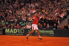 Novak Djokovic-7 Immagine Stock Libera da Diritti
