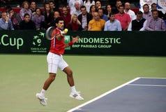 Novak Djokovic-5 Royalty Free Stock Photo
